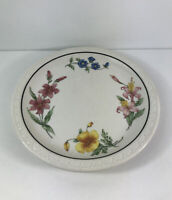 Southern Pacific Lines Prairie Mountain Wildflowers Railroad Plate China Rare