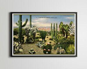 "Vintage Desert Cacti POSTER! (up to 24"" x 36"") - 1945 - Postcard - Cactus - Art"
