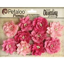 Petaloo AMBER Flora Ephemera BOTANICA Flowers Mixed Media Cards 1100-203
