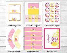 Pink Lemonade Printable Birthday Party Package