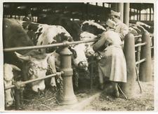 Paris, Les bouviers du marché en grève, 1930 Vintage  silver PrintL'Armée