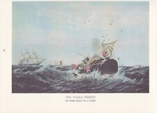 """1974 Vintage Currier & Ives Whaling """"Sperm Whale In A Flurry"""" Color Lithograph"""