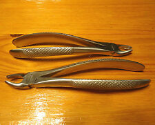 2- Extraction forceps 39 R&L Pediatric Upper Molars Awesome Quality & Price sale