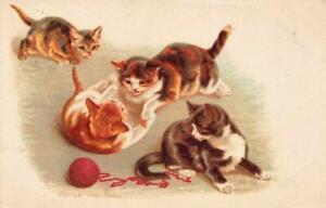 1903  CAT  KITTENS After the Ball  Tucks  Animal Life Series Litho Postcard