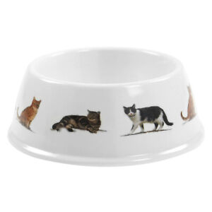 Cat Pet Feeding Bowl Food Water Wide Dish Shallow Flat Non-Slip Base Accessory