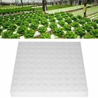 100x/Set  Hydroponic Sponge Plant Gardening Tool Seedling Sponges for Greenhouse