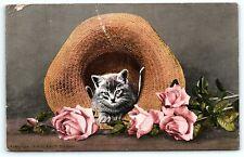 VTG Postcard Antique1909 Cat in Hat Kitty Kitten Pink Rose Straw Mitchell A5