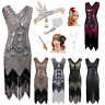 1920's Flapper Dress Great Gatsby Charleston Sequin Fancy Fringe Party Costume
