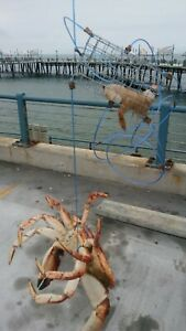 """BIG-B's CRAB SNARE""""S, 5 inch"""