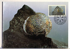 LIECHTENSTEIN Carte Postale Maximum N° 92 BOULE DE PYRITE   LIE11