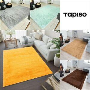 Shaggy Rug Large Living Room Bedroom Floor Mat Deep Pile Rugs Soft Silky Carpet