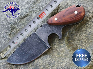 Fixed Blade Hunting Pig Knife Camping Tactical Outdoor Survival Combat Small