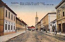 Romania 1916 Caransebes,Karánsebes,Caras-Severin County,street scene,animated pc