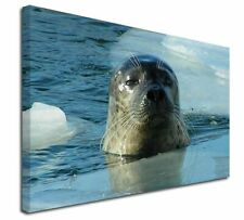 More details for sea lion in ice water x-large 30