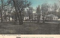Frontenac Minnesota~Cottages Along Road Thru Trees~1907 FH Phillips Postcard