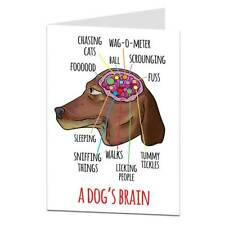 Dog Birthday Card To Or From Funny Cool Quirky Brain Design Owner Lover