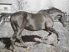 """MAN O' WAR""  Press Photo-1939  PRINT  5 X 7"