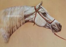 BEAUTIFUL GRAY GREY White Arabian Mare Corita HORSE ART PRINT 1980's RARE