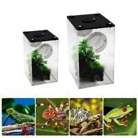 Reptile Feeding Box Transparent Insect Breeding Box Snake Spider Lizard Scorpion