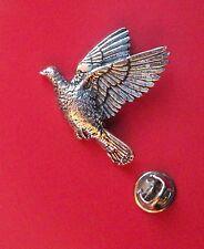 English Pewter WOOD PIGEON, bird Pin Badge Tie Pin / Lapel Badge (XTSBPB34)