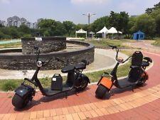 1000w Big Wheels Electric Scooter with removable battery 2017 Model
