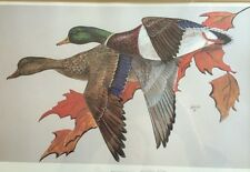 "Pat Whipp ""MALLARDS IN FLIGH"" Lithograph Print Signed COA 475/1000"