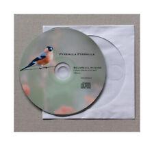 Bullfinch song CD. Bouvreuil Pivoine.  Bird. Cardellino. Oiseau