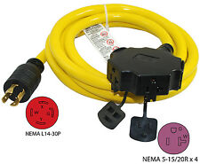 30A 10FT L14-30P Generator Extension Cord 20610-010