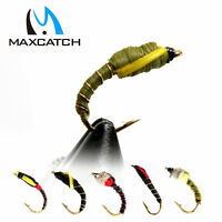 Maxcatch Fly Fishing Buzzer Flies Assortment Nymph Trout A dozen with Box