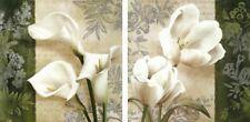 Wand Bild Conrad Knutsen Botanik Blumen Malerei Creme 49x49x1,2 cm A7DH