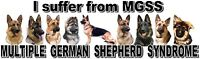 """I Suffer from MULTIPLE  GERMAN SHEPHERD  SYNDROME"" Dog Car Sticker by Starprint"