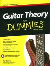 Guitar Theory For Dummies  Learn to Play Basics BEGINNER Lesson Tutor Music Book