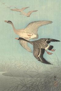 White Fronted Geese in Flight by Watanabe Shozaburo Japanese Woodblock Print