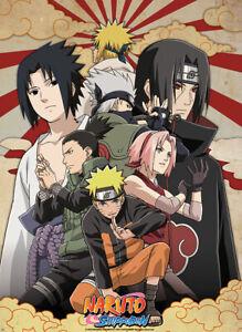 Naruto Shippuden - Shippuden Group #2 Small Poster