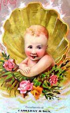 1870s-80s Lovely Venus Mythology Baby Shell, Cassaday & Son, Aliance, OH F5