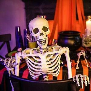 5FT Full Body Skeleton Lifelike Halloween Props Movable Joints Haunted House US