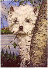 "WEST HIGHLAND WHITE TERRIER WESTIE DOG ART LIMITED EDITION PRINT - ""Peek-a-Boo"""