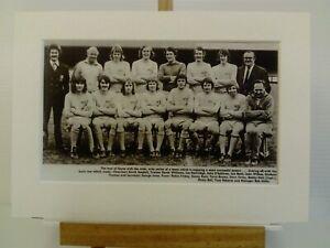 Amateur football team print HAYES F.C.
