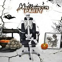 65in Halloween Poseable Human Skeleton Full Life Size Props Party Decoration