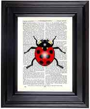 Ladybird Altered Art Unique Print Upcycled Vintage Dictionary Book Page