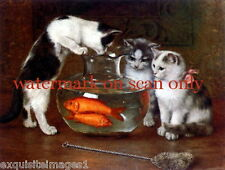 Vintg Art~3 Kitten Kittens Cat Cats~Fishbowl~Goldfish~Ne t~New Lge Note Cards