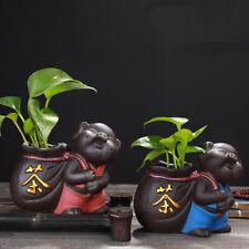 Green plant Potted Water culture vase flower pot zisha pet tea table decoration