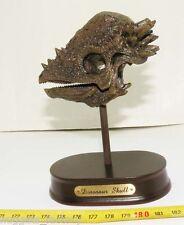 Replique de crane de dinosaure Pachycephalosaurus ( 005 )