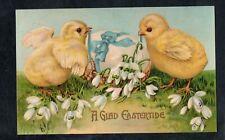 C10 postcard Easter chicks on Egg blue ribbon 1908