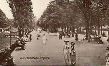 postcard Bedfordshire Bedford The Promenade un posted Valentine's