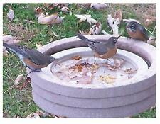 Songbird Essentials Bird Bath Raft SE6017