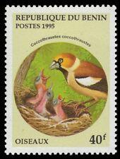 "BENIN 780 - Hawfinch ""Coccothraustes coccothraustes"" (pf11928)"