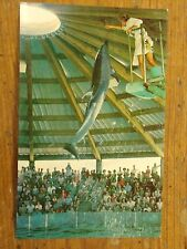 Vintage Postcard Makua, A Bottlenosed Porpoise, Ocean Science Theatre, Hawaii