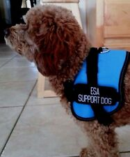 ESA Support Dog Vest Blue Comes With 2 Patches Large with Glue Stain Free Ship