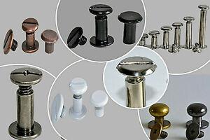 10 x Buchschrauben 5mm - 30mm / Schraubnieten / Buchnieten / Chicagoschrauben
